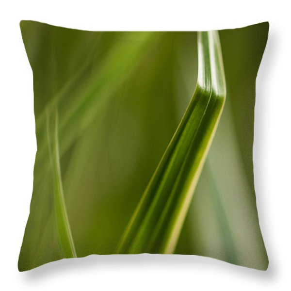 Blades Abstract 3 Throw Pillow by Mike Reid