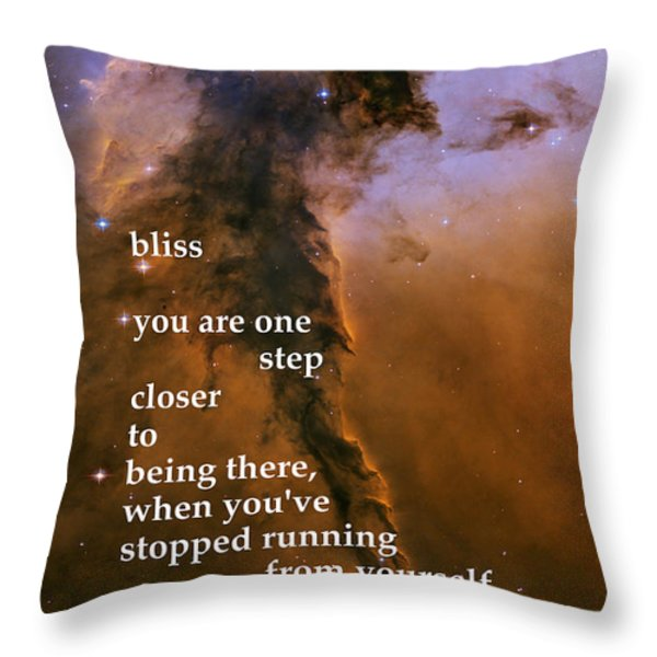Bliss Throw Pillow by Richard Donin