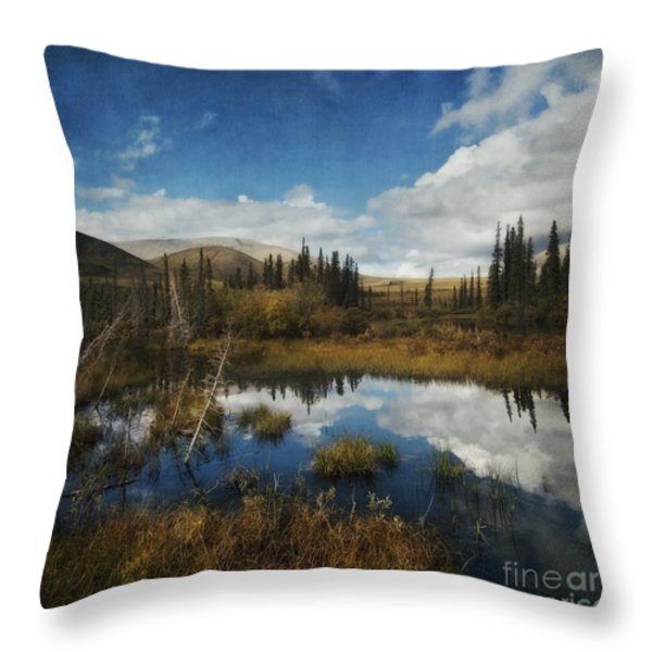 Blissful Lone Land Throw Pillow by Priska Wettstein
