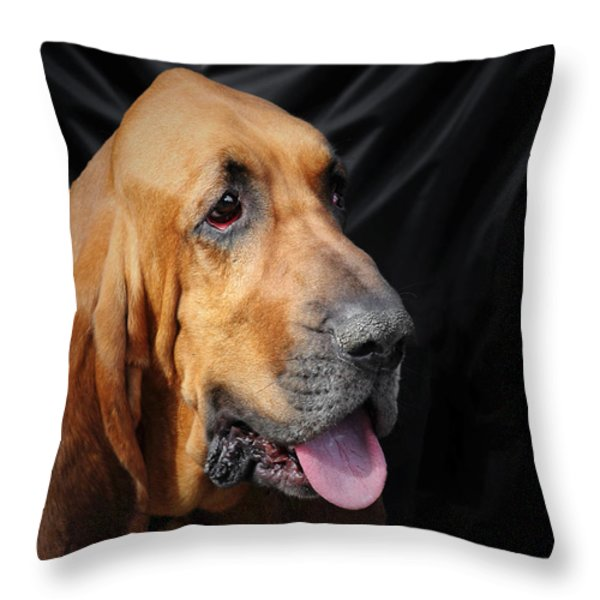 Bloodhound - Governed by a world of scents Throw Pillow by Christine Till