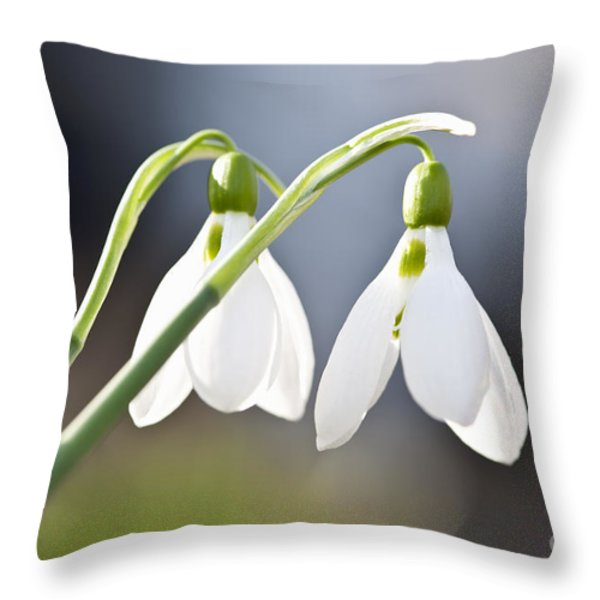 Blooming Snowdrops Throw Pillow by Elena Elisseeva