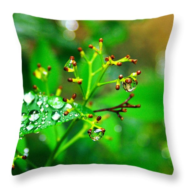 Bloomless Throw Pillow by Toni Hopper