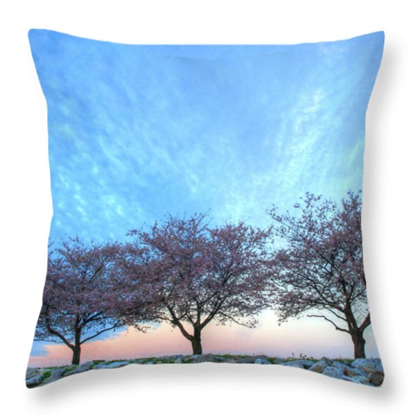 Blossoms Throw Pillow by JC Findley