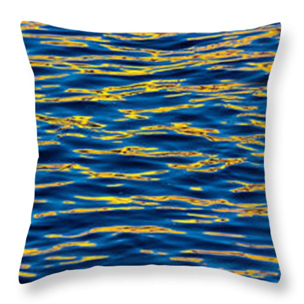 Blue and Gold Throw Pillow by Steve Gadomski