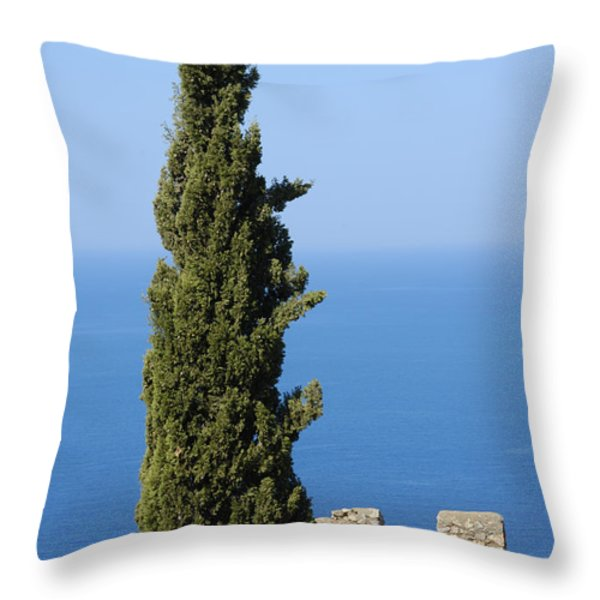 Blue ocean and sky green tree - Serene and calming  Throw Pillow by Matthias Hauser