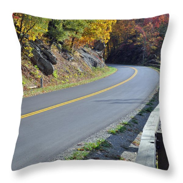 Blue Ridge Parkway Autumn Road Throw Pillow by Bruce Gourley