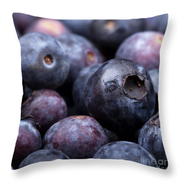 Blueberry background Throw Pillow by Jane Rix