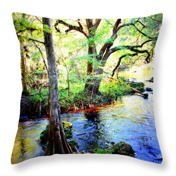Blues In Florida Swamp Throw Pillow by Carol Groenen