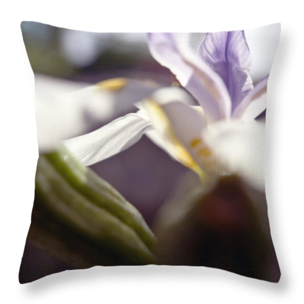 Blurred Iris Throw Pillow by Ray Laskowitz - Printscapes
