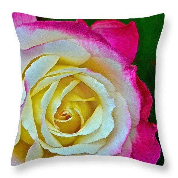 Blushing Rose Throw Pillow by Bill Owen
