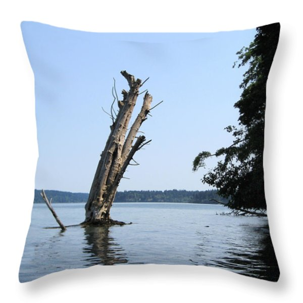 Boaters Nightmare Throw Pillow by Kym Backland