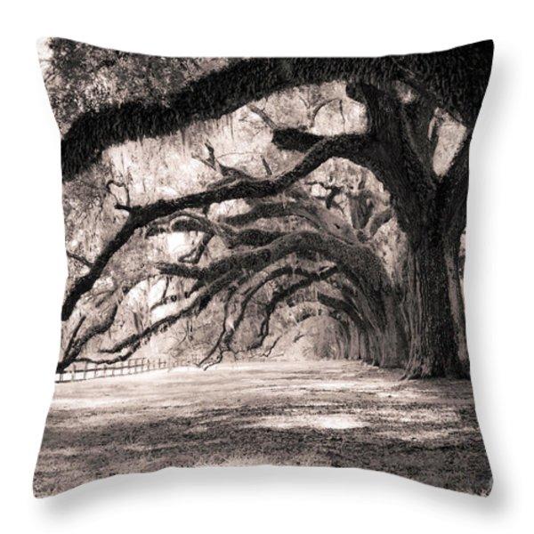 Boone Hall Plantation Live Oaks Throw Pillow by Dustin K Ryan