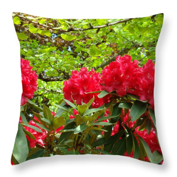 Botanical Garden Art Prints Red Rhodies Trees Baslee Troutman Throw Pillow by Baslee TroutmanFine Art Prints Collections