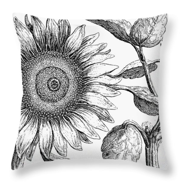 Botany: Sunflower Throw Pillow by Granger