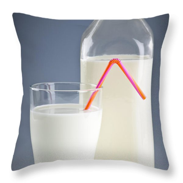 Bottle and glass of milk Throw Pillow by Elena Elisseeva
