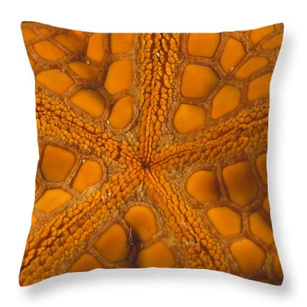 Bottom Of Orange Sea Star Or Starfish Throw Pillow by James Forte