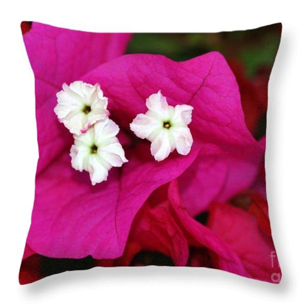Bouganvillea Throw Pillow by Sabrina L Ryan