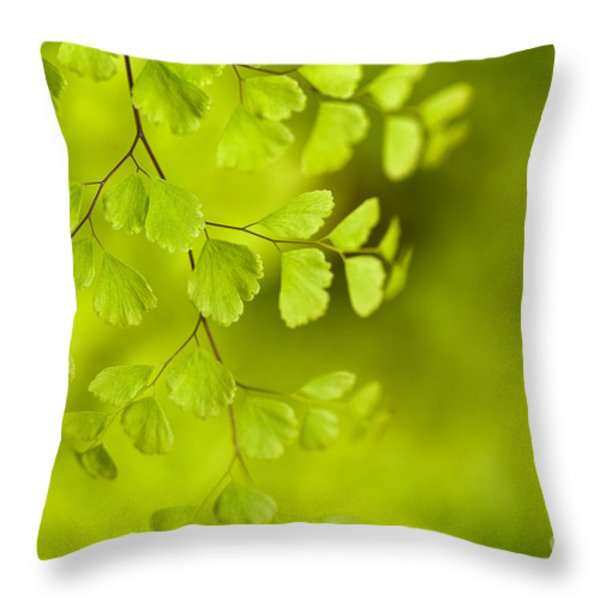 Branching Out Throw Pillow by Reflective Moment Photography And Digital Art Images