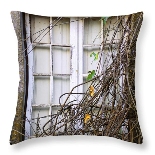 Branchy Window Throw Pillow by Carlos Caetano