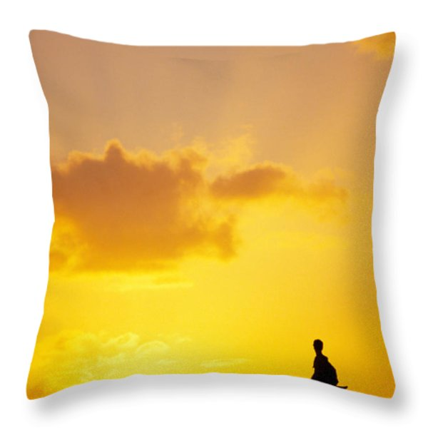 Break At Sunset Throw Pillow by Joe Carini - Printscapes