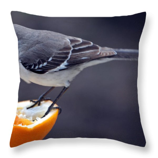 Breakfast Throw Pillow by Skip Willits