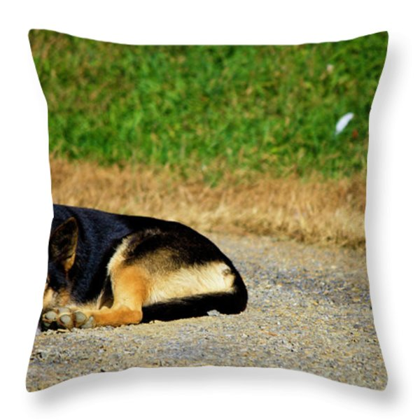 Breaktime Throw Pillow by Teresa Mucha