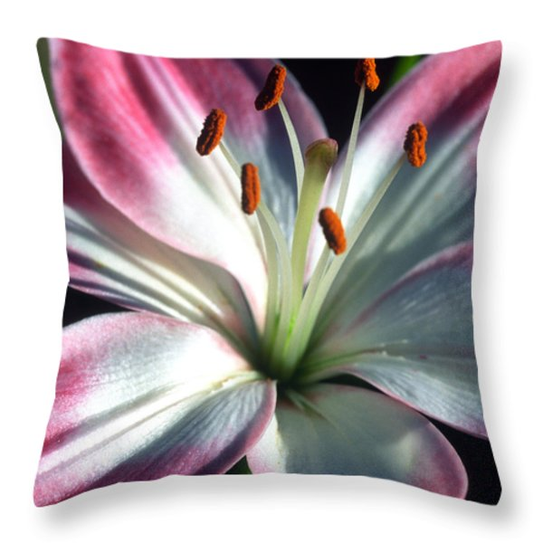 Brilliance Throw Pillow by Kathy Yates