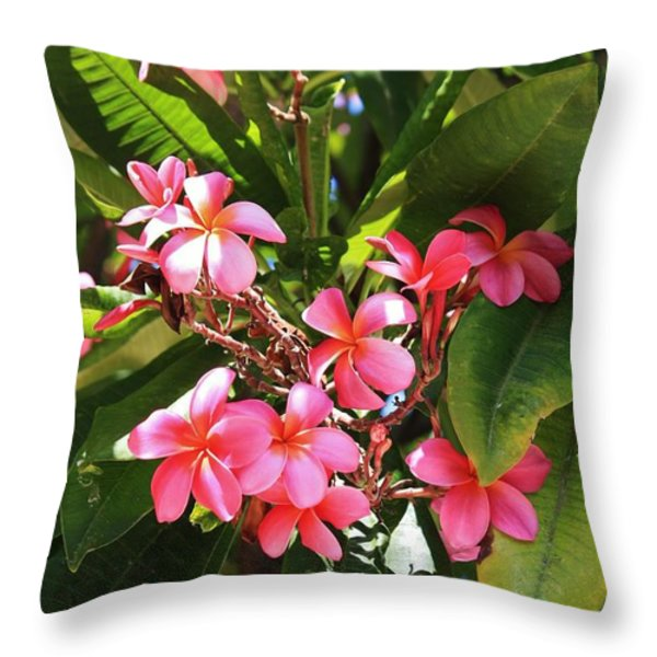 Brilliant Pink Plumaria Throw Pillow by Craig Wood