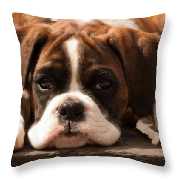 Brindle Boxer Pup Throw Pillow by Bel Menpes