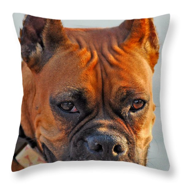 Bring it on Throw Pillow by Joann Vitali