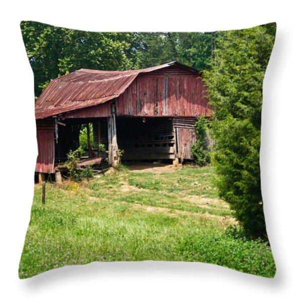 Broad Roofed Barn Throw Pillow by Douglas Barnett