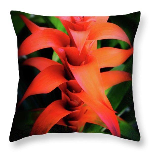 Bromeliad Plant Throw Pillow by Heinz G Mielke
