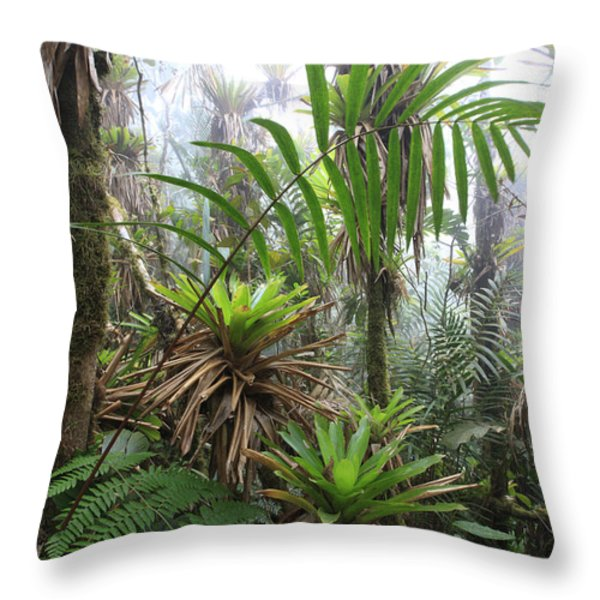 Bromeliads And Tree Ferns  Throw Pillow by Cyril Ruoso