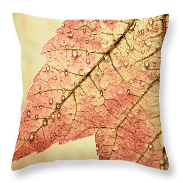 Brown Autumn Throw Pillow by Carol Leigh