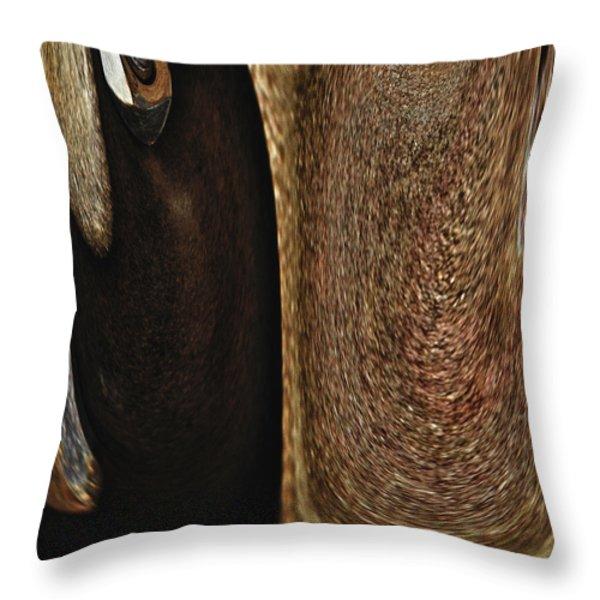 Brown Metal Throw Pillow by Skip Nall