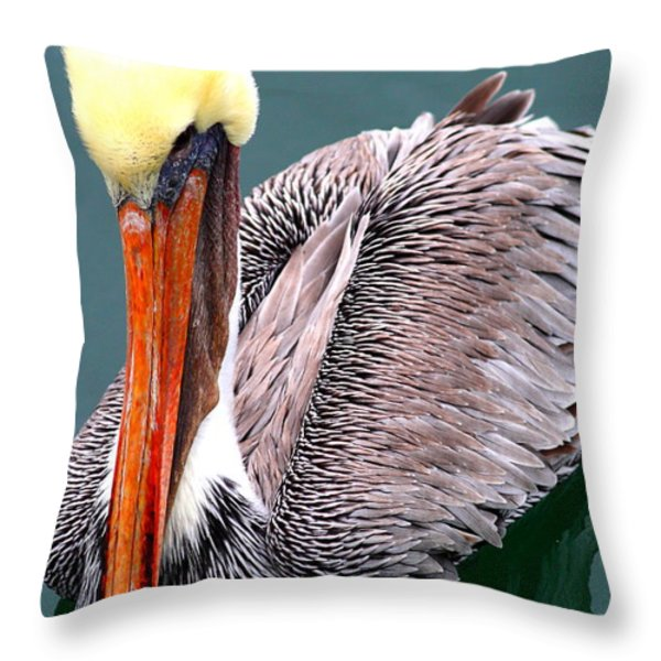 Brown Pelican . 7d8287 Throw Pillow by Wingsdomain Art and Photography