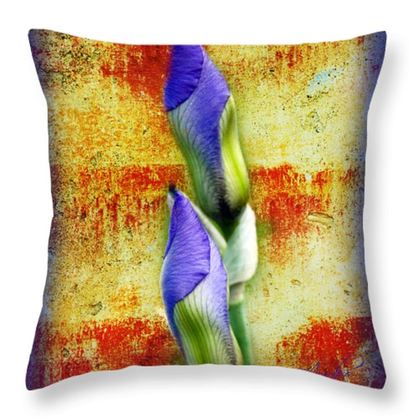 Buddies Throw Pillow by Andee Design