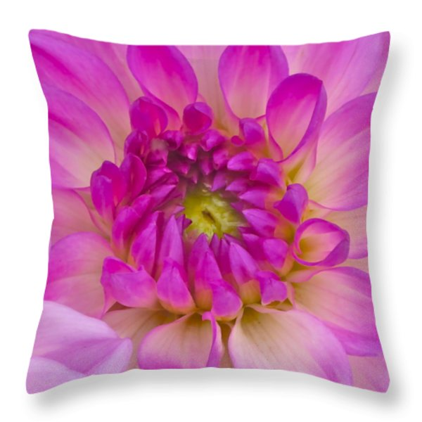 Buddy Up Close Throw Pillow by Gwyn Newcombe