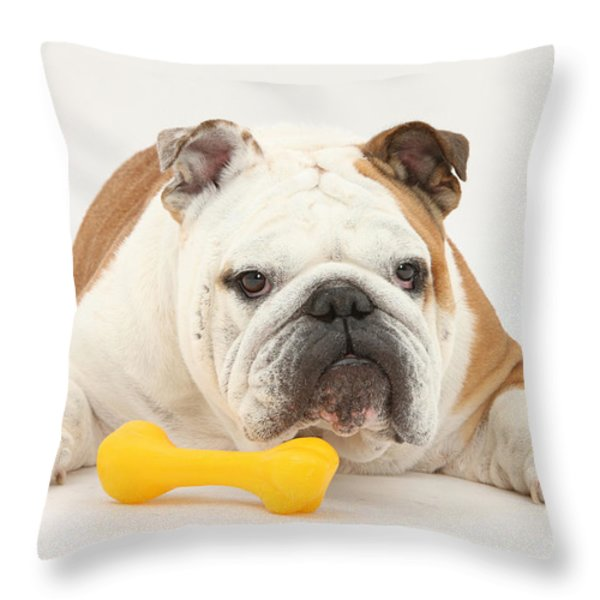 Bulldog With Plastic Chew Toy Throw Pillow by Mark Taylor
