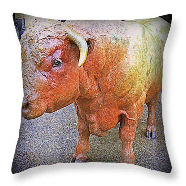 Bulls Eye Throw Pillow by Randall Weidner