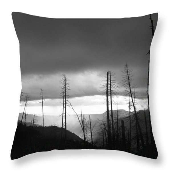 Burnt Forest II - Yosemite Throw Pillow by Charmian Vistaunet