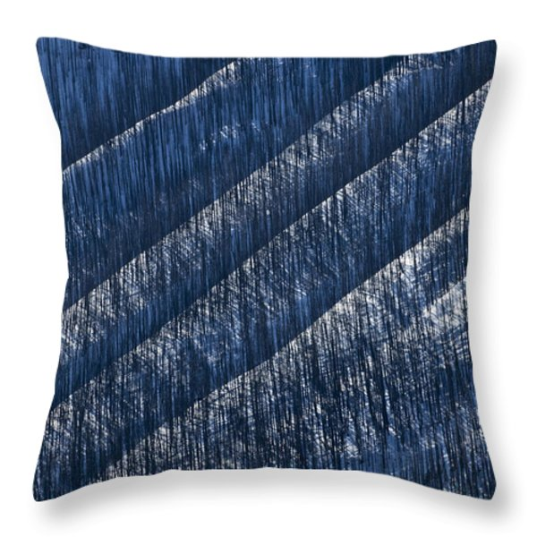 Burnt Trees On Mountain Slope Throw Pillow by Mike Grandmailson