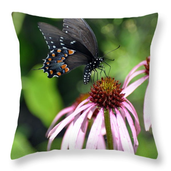 Butterfly And Coine Flower Throw Pillow by Marty Koch