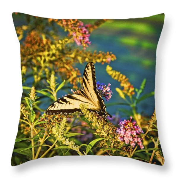 Butterfly Bandit Throw Pillow by Nick Roberts