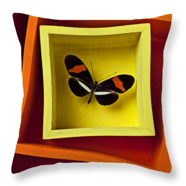 Butterfly In Box Throw Pillow by Garry Gay