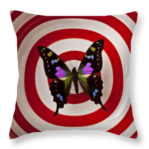 Butterfly In Circle Bowl Throw Pillow by Garry Gay