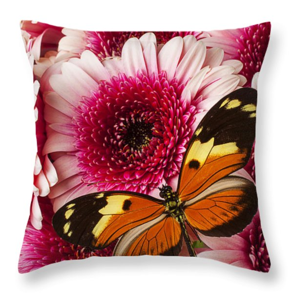 Butterfly On Pink Mum Throw Pillow by Garry Gay