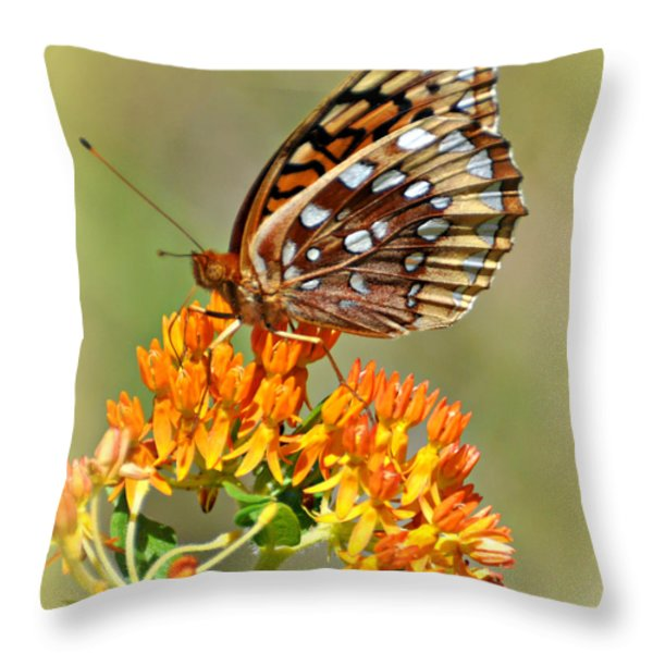 Butterfly Weed 1 Throw Pillow by Marty Koch
