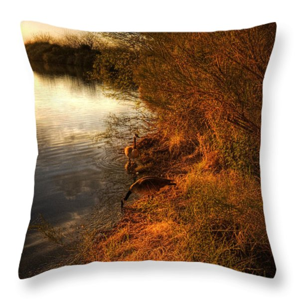 By The Evening's Golden Glow Throw Pillow by Saija  Lehtonen