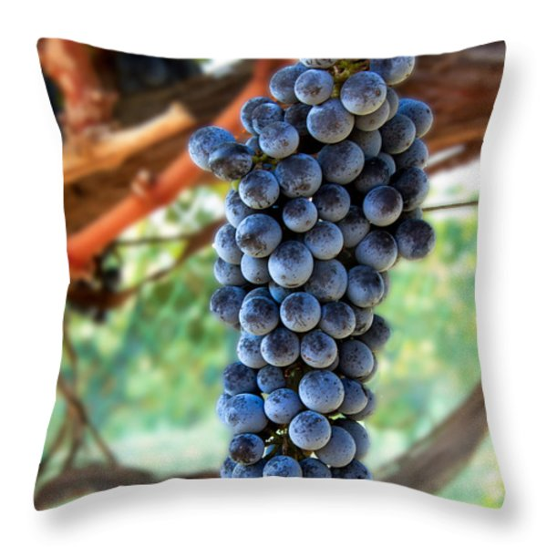 Cabernet Sauvignon Throw Pillow by Robert Bales